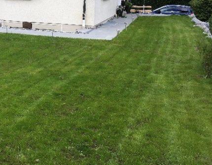Rasenflächen 2